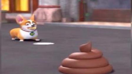 飛狗MOCO小柯基去買雪糕雪糕掉地后用它頂替結局把人笑噴了