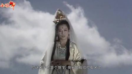 观音菩萨为何给八戒沙僧也起名悟字辈儿?她是在保护孙悟空?