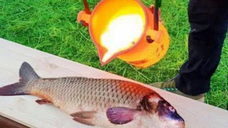 老外找来1000度的岩浆,直接倒在鱼身上,你猜还能吃吗?