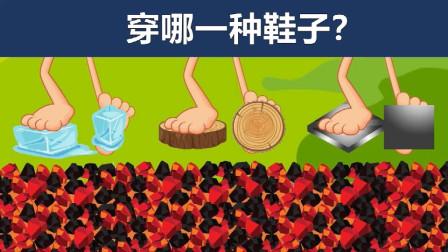 脑力测试:冰块、木块和铁块,你会穿哪一种鞋子呢?