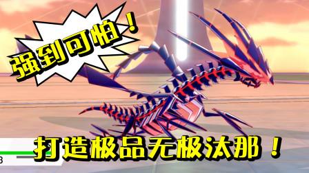 ★精灵宝可梦剑盾★创造了一只极品无极汰那!但它好像需要两个帮手!★15b