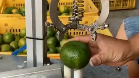新研制的剥桔子机器,用起来也太方便了,放上两年就是陈皮!