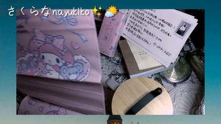 奈雪子/名侦探柯南周边到货 飒漫画总结 来自亚林子的礼物开箱