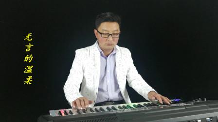 《无言的温柔》电子琴音乐