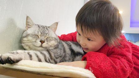 广东小孩给猫咪拜年的独特方式!猫:竟然不是小鱼干!