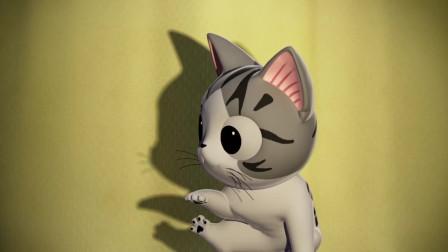《甜甜私房猫》小奇超级的萌,超级的可爱哦