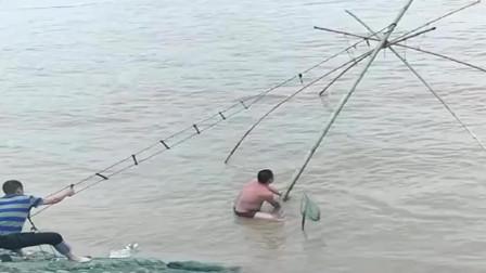 农村人用最古老的捕鱼工具抓鱼,这网简直太大了,一网起来几十斤收获!