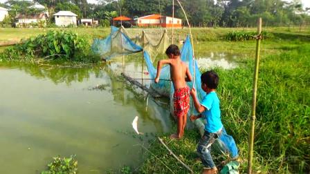 家里没肉吃了,哥哥弟弟一起出来钓钓鱼,看看他们钓了多少?