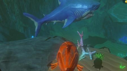 海底大猎杀:这条鱼敢挑战沧龙 结果被一口秒了!
