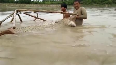 印度兄弟下水捕鱼,三人齐力才将它逮到