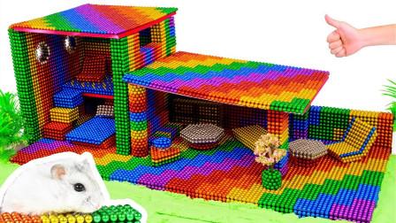磁球大创造,小哥用它给可爱的仓鼠建造神奇的宠物玩具屋,真赞