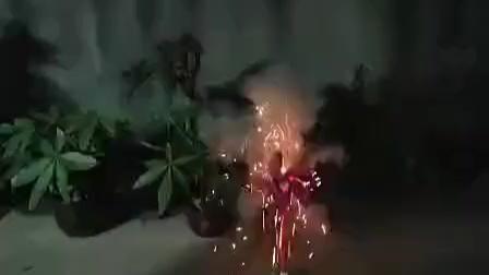 这个烟花好魔幻~