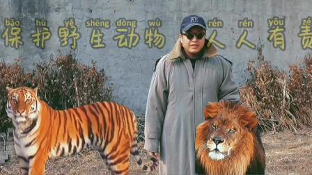 保护野生动物,人人有责,人与动物和谐相处
