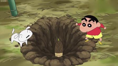 蜡笔小新:这么多竹笋,小新这挖竹笋的动作太滑稽了