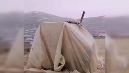 甘肃临洮县乡村一高三学生因家中无网 山顶搭帐篷上网学习