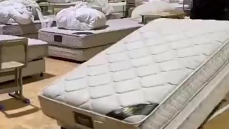 """一夜变身""""方舱医院""""!武汉洪山体育馆800张病床就位"""