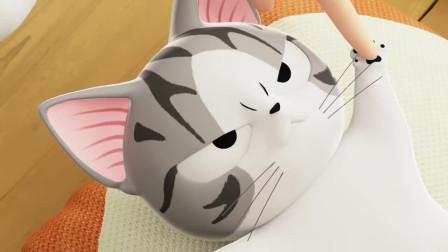 甜甜私房猫:小奇,你不喜欢这样吗