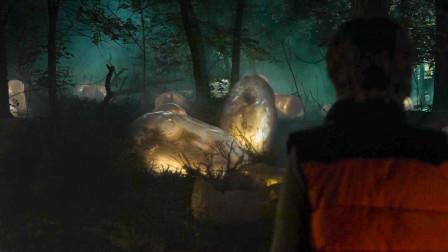大片神秘陨石降落树林,发出诡异亮光,人类却不知这是末日前兆