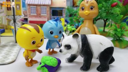《萌鸡小队》小故事,一起参观大熊猫,哇,大熊猫好萌呀!