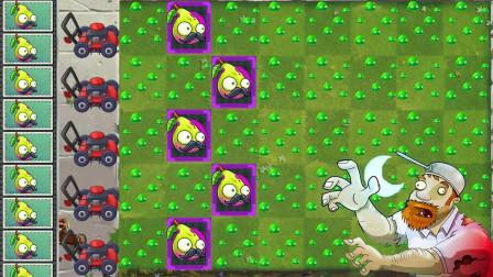 变异梨子和瓷砖萝卜强强联合,僵尸们的入侵花园的难度再次升级!