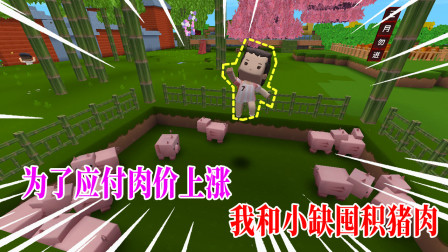 迷你世界小缺生存114:为了进军农贸市场,我和小缺开始囤积猪肉