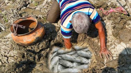 70岁大爷田里搞野,挖开泥块发现一窝大鱼,抓了一条又一条