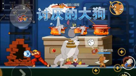 猫和老鼠 小握东北话解说:大狗穷搅和 汤姆都想钻墙缝了