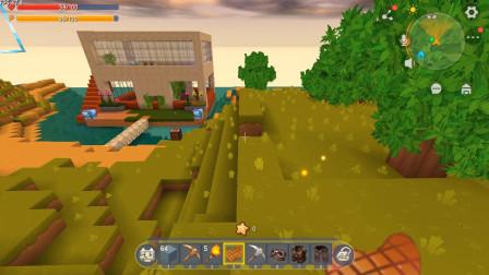 参观粉丝的图33:13岁小男孩建造的房子,咱们来看一下