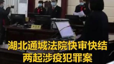 湖北通城法院快审快结两起涉疫罪案