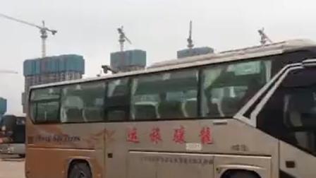 2月7日,长沙望城调配十台大巴接比亚迪长沙电子有限公司员工安全返岗,支持企业复工复产。