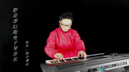 野花香DJ版电子琴音乐