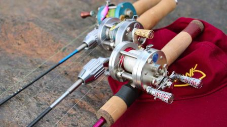 蜻蜓胡扯:溪流轮-关于磁力刹车与离心刹车