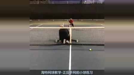 正反手网前小球