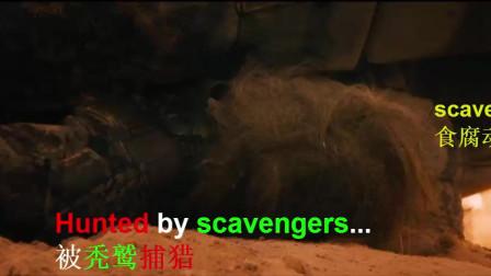看电影《疯狂的麦克斯4》学习英语口语