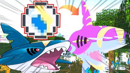 精灵宝可梦打败野生巨牙鲨罕见BOSS