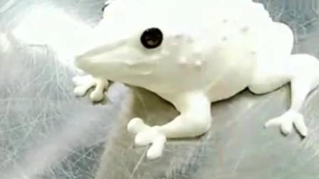 牛人创意:蛋糕师傅才是艺术家,眨眼的功夫,一只青蛙就出现了