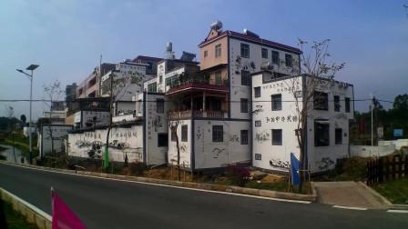 省级示范新农村茂名市十大美丽(旅游)乡村博带村