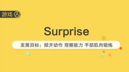 11月龄-精细课A-surprise