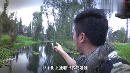 中国小伙深入拍摄墨西哥鬼娃娃岛,传说进入会被诅咒是真的是假?