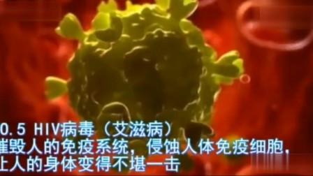 带你了解全球十大病毒