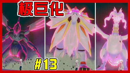 【XY小源】精灵宝可梦剑与盾 盾版 第13期 黑白龙与雷欧的极巨化