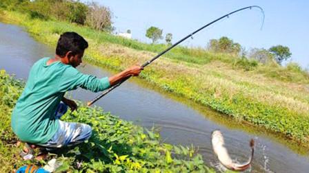 小哥河边钓鱼,大鱼小鱼纷纷上钩,看看他钓了多少?