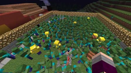 【我的世界】植物大战僵尸影分身蘑菇终极散弹枪!