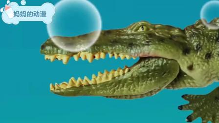 鳄鱼历险记,刚从河马口中逃走又遇到鲨鱼追赶 动物动漫
