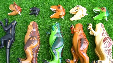 乐高侏罗纪世界 霸王龙腕龙趣味识乐高恐龙名称