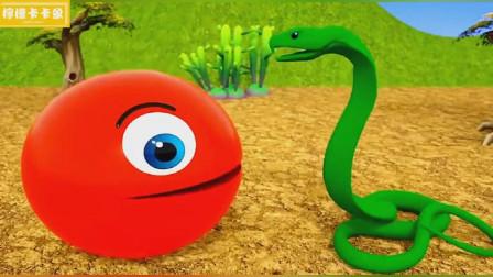 奇怪的动物世界,为什么都要拦着吃豆人的去路呢?吃豆人游戏