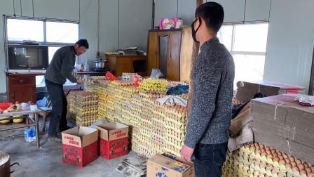 今天小伙去养鸡场买鸡蛋,现在鸡蛋多少钱一斤?价格合适多买点