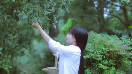 李子柒在院子里摘了一篓桂花,手工酿制桂花酒