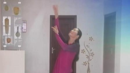 《夜阑情歌》湘女王舞蹈  制作、演绎:湘女王  编舞:静静