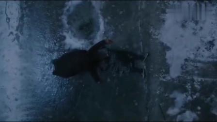 新世界:坏人做到底,铁林将徐叔扔进冰洞里!